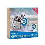 Tractive Traceur GPS pour Chiens - Appareil de Suivi pour Chien à portée illimitée, étanche et léger.