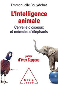 L'intelligence animale par Emmanuelle Pouydebat