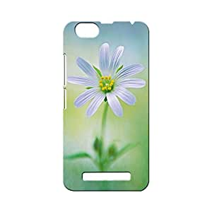 BLUEDIO Designer Printed Back case cover for Lenovo Vibe C ( A2020) - G4574