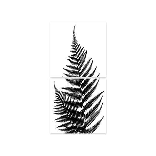 Boubouki - Wasserabweisende Fliesenaufkleber für Bad und Küche - Farn Poster - 10x10cm, Transparent -