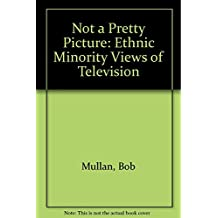 Not a Pretty Picture: Ethnic Minority Views of Television
