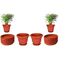 Spylark First Smart Plastic Elegance Pot Set (8-inch)(Pack of 2)