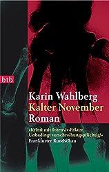 Kalter November: Roman