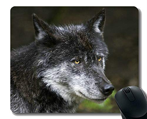 Messing Mat (Gaming Mouse Pad Benutzerdefinierte, Tier Wolf Hohl Gaming Mousepad Mat)
