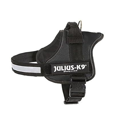 Julius-K9, 162P2, Powerharness, Size: 2, Black 3