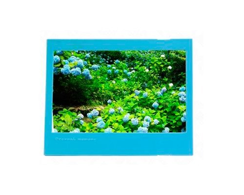 Shopready 0193_105 1-Piece Colorful Photo Frame for Instant Camera Films Fujifilm Instax Wide 210 Films + Instax Wide 300 Films or Instant Wide 200 Films + Fujifilm FP 3000B Films + Fujifilm FP100C Films (Blue)  available at amazon for Rs.1479