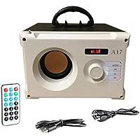 Libertey Radio portátil, SD-TF-USB-Mini Reproductor de música estéreo, Altavoz BT de Madera, para el hogar, Coche, Oficina