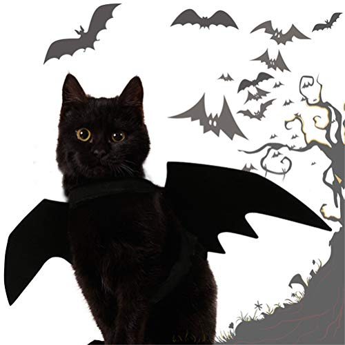 d Katze Fledermausflügel Cosplay Prop Halloween Fledermaus Kostüm Outfit Flügel ()