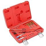 vidaXL Kit de Nettoyage pour Injecteur 14 pcs Outil de Réparation Nettoyage de Siège d'Injecteur Diesel Outils pour Voiture Véhicules Garage
