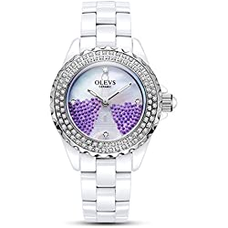 Lady ceramic/French romantic watches/Simple casual watches-B