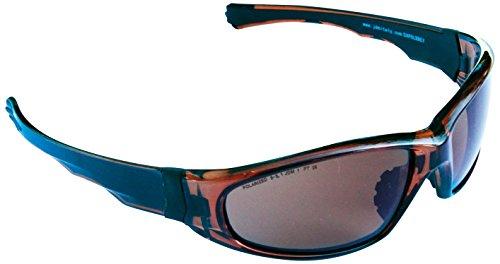 Eagle EAPOL Arbeitsschutzbrille mit polarisierten Scheiben aus Polycarbonat, braun