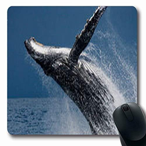 Luancrop Mousepads Schlag-Buckel-Wal springt Insel-Wasser-Tier-Natur-längliches Spiel heraus Mousepad rutschfeste Gummimatte (Wasser-schlag-haus)