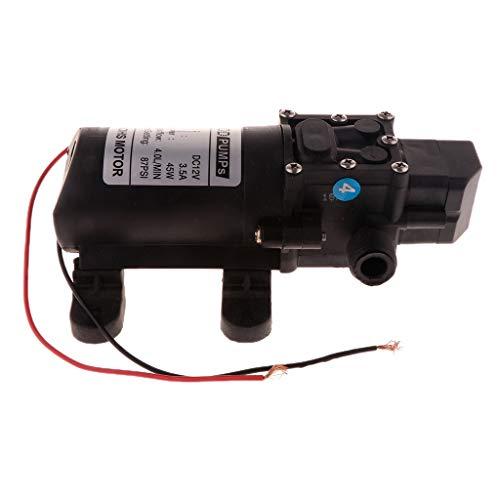 FLAMEER 12V Wasserpumpe Membranpumpe für Boot, Wohnwagen oder Wohnmobil - B