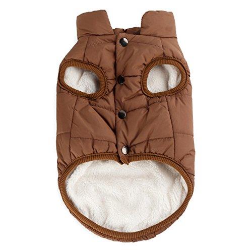 Woopower warmer Hundemantel, winddichte Welpenweste Jacke Haustier Winter Kleidung für kleine/mittlere/große Hunde, Größen: XS-3XL -