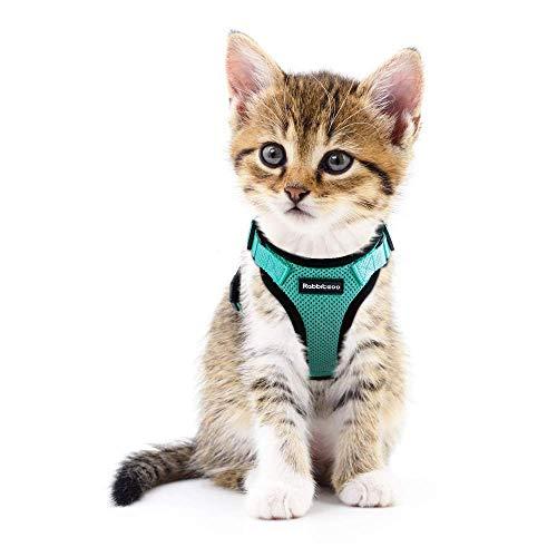 rabbitgoo Katzengeschirr Ausbruchsicher Geschirr Katze Kleine Verstellbar Katzengarnitur Welpengeschirr Geschirr für Katzen Kitten kleine Hunde Chihuahua Cat Harness Grün XS
