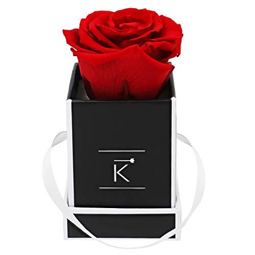 Triple K Rosenbox Square Black, Infinity Rosen, bis 3 Jahre haltbar, Flowerbox Geschenkbox inklusive Grußkarte (XXS, Red)
