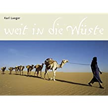 Weit in die Wüste