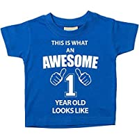 60 Second Makeover Limited This is What an Awesome 1 Year Old Looks Like Blue Tshirt 1st Birthday Baby Toddler Kids Available in Sizes 0-6 Months t