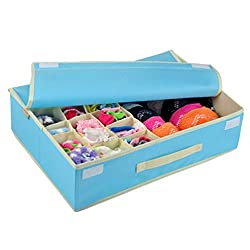 Storage Box - Multi Compartment 15 + 1 Cells Dustproof Drawer Dividers Closet Organizers / Storage Box / Non - Smell Drawer Organizer For Sock Bra Underwear Scarf Tie Storage Box with Cover By KARP - Blue Color