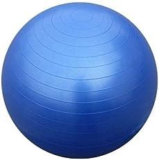 Kriya Enterprises Body Exercise Workout Anti Burst Gym Ball 75 cm with Foot Pump (Multicolor)