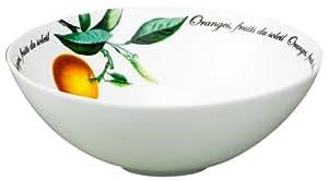 Fruits du Soleil à soupe Bol en porcelaine anglaise Blanc 18 cm