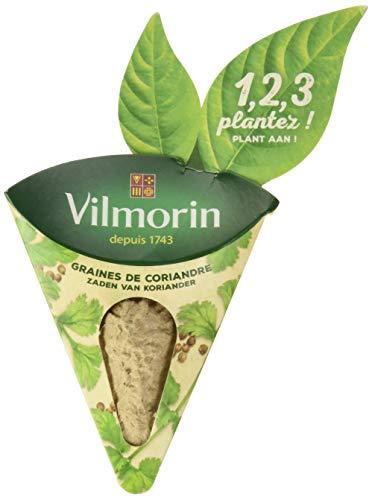 KG BY VILMORIN 3111106 1,2,3, Plantez Coriandre, Vert, 17 x 16 x 14 cm