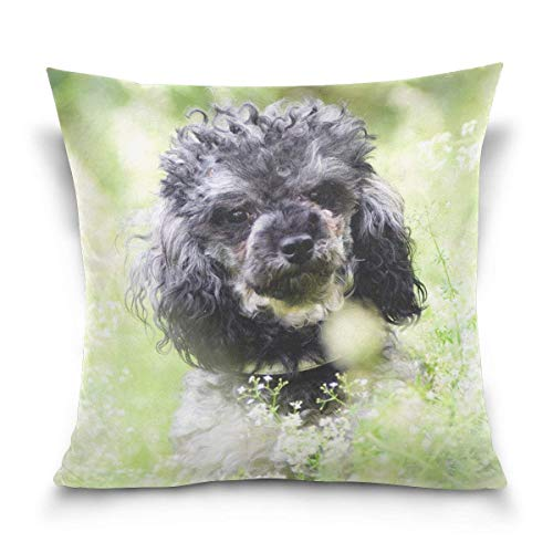 Gorgeous ornaments Basset Hound Dog Decorative Square Double-Sided Throw Pillow Case Cushion Cover 18 x 18 inch for Sofa Bedroom Car -