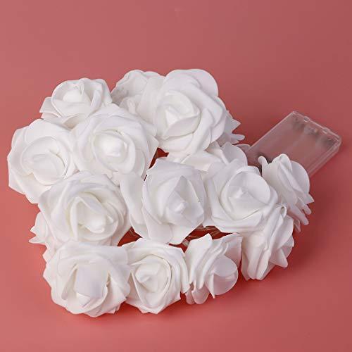 TAOtTAO 6,5 Meter 40 Licht Batteriekasten Simulation Rose Lichterkette Weihnachten Hochzeit Urlaub Geschenk Dekoration Warmweiß, Weiß, Farbe