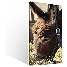 Lienzo de 1 TLG de paja y de burro de peluche con imagen de diseño de imágenes de la cabeza de animales de granja de 9B969Holz - Enmarcado - directamente desde el fabricante, 40 x 80 cm