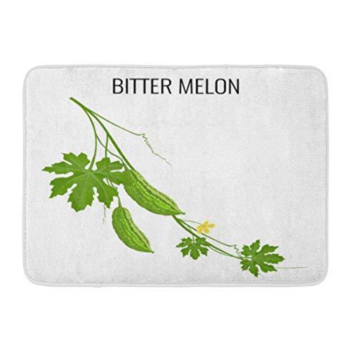 Soefipok Badematte Bitter Melon Pod Weiß Zweig Balsam Birne Reife Früchte Grüne Blätter Gelbe Blume Asiatische Badezimmer Dekor Wolldecke -