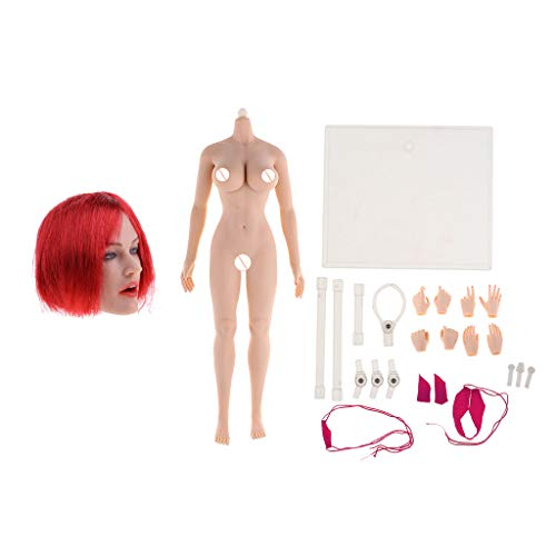 Homyl 1: 6 Scale Super Flexible Seamless Body + Head Model GC017 for Female Action Figure 12 Inches