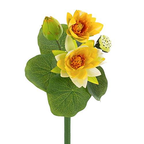 artplants - Künstliche Seerosenpflanze SABIHA, 2 gelbe Blüten, Knospe, Fruchtstand, grüne Blätter, 40 cm - Kunst Wasserpflanze / Lotuspflanze