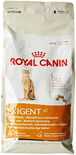 royal canin bengal cat food