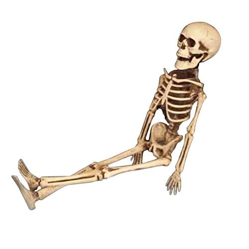 Royalist Halloween-Skelett aus Kunststoff, lebensecht menschliches Skelett Totenkopf, Ganzkörper-Halloween-Skelett für Halloween Bar Dekoration ()