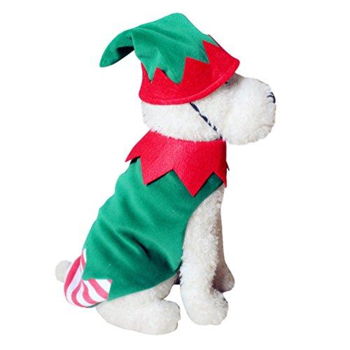 Yuncai Lustige Halloween Haustier Hund Kleidung Weihnachts-Clown Kürbis Spinne Hexe Verkleiden Sich Party Kostüm Cosplay für Katze XL (Spinne Für Kostüm Hunde)