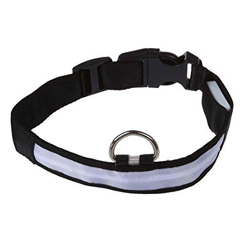 SODIAL (R) LED-Blitzlicht einstellbare Sicherheits Haustier Hund leichtes Nylon-Halsband Plain Tag - Weiss S