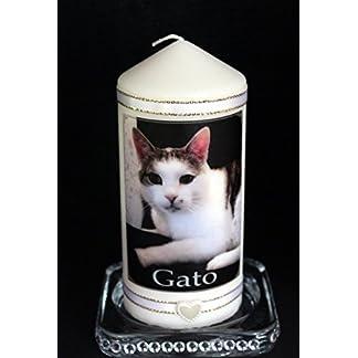 Cat memorial candle personalised photo keepsake of your beloved cat Cat memorial candle personalised photo keepsake of your beloved cat 418wHfLkAgL