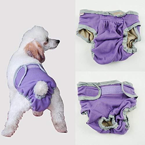 3 Falten Stück Kostüm - QDZSQFF Mutter Hund Windel Waschbar Hund Windel GroßE Und Mittlere Hund Sicherheitshose Wiederverwendbare WelpenunterwäSche (3 StüCk) XL