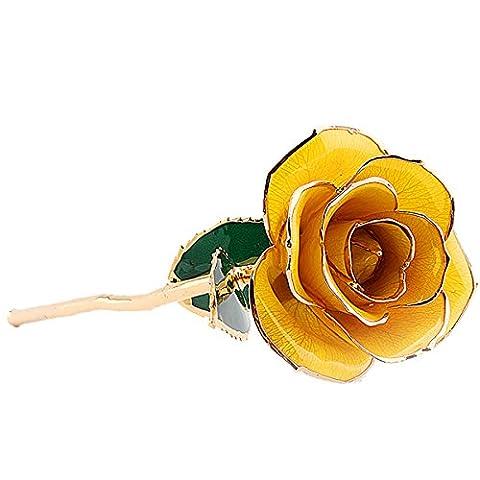 ZJchao Long Stem Dipped 24k Gold Rose Foil Trim,Best Gift