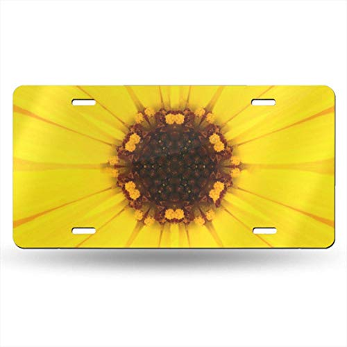 FunnyCustom License Plate Frame Yellow Mandala Concentric Dahlia Center Amazing Aluminum Metal Tag Holder Waterproof 12 x 6 Inch Decoration