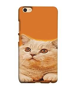 PrintVisa Cute Pussy Cat 3D Hard Polycarbonate Designer Back Case Cover for Vivo V5 Plus