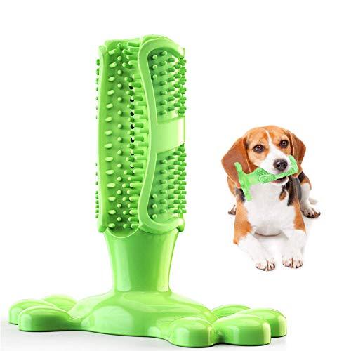 GingerUP Hundezahnbürste, Kauspielzeug für Hunde, Zahnreiniger, Welpen, Zahnpflege, Bürstenstick, Naturkautschuk, Beißfest, Kauspielzeug für Hunde, Haustiere, orale Pflege (S)