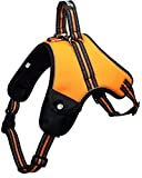 Hundegeschirr für kleine/mittelgroße/ große Hunde und Welpen | reflektierendes 3M Sicherheitsgeschirr | gefüttert, weich und atmungsaktiv | S-XXL | schwarz, grün, orange (M, Orange)