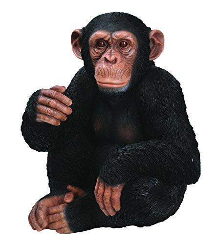 Vivid Arts XRL-D-CHM3 Schimpanse, sitzend, Kunstharz Gartendeko