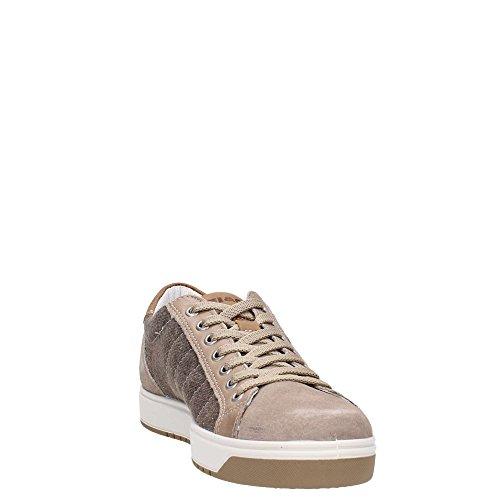 Igi&Co Uomo Sneaker 77257 USV 7724 TORT Sneaker in camoscio Tortora/Beige