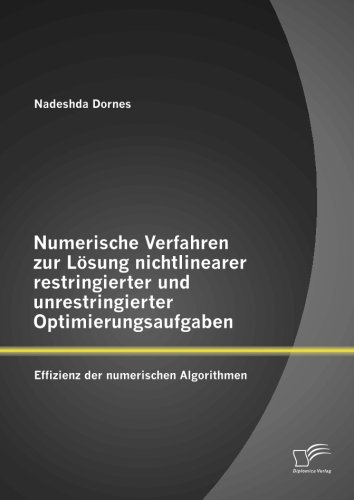 Numerische Verfahren zur Lösung nichtlinearer restringierter und unrestringierter Optimierungsaufgaben: Effizienz der numerischen Algorithmen