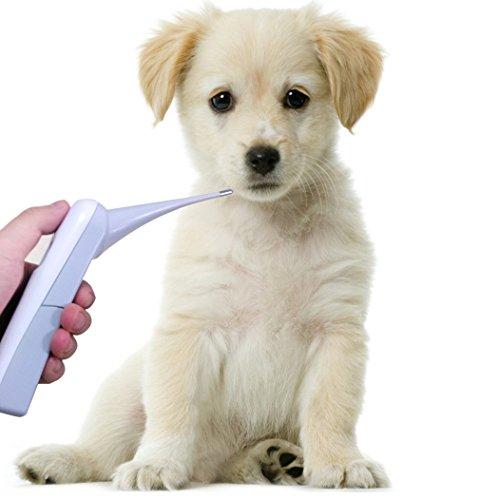Artikelbild: Digitale Hundethermometer, messen Haustier oral oder anus Temperatur in 8 Sekunden, verwendbar für Hund, Katze, Vogel und Kuh. C / F schaltbar.