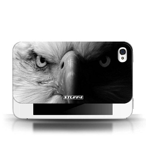 Stuff4 Hülle / Hülle für Apple iPhone 4/4S / Wolf Muster / Zoo-Tiere Kollektion Adler / Raubvogel
