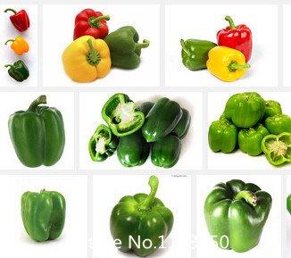 Pénis Chilly Pepper graines de promotion de semences fraîches poivrons maison et légumes de jardin graines nouveauté drôle Seed Novel