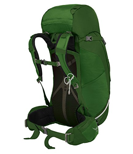 Osprey Kestrel 58 Trekkingrucksack M/L 2 jungle green